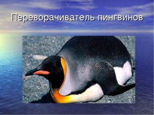 Переворачиватель пингвинов Учитель биологии Ачкасова Ю.М.
