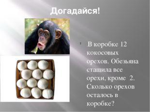 Догадайся! .В коробке 12 кокосовых орехов. Обезьяна стащила все орехи, кроме