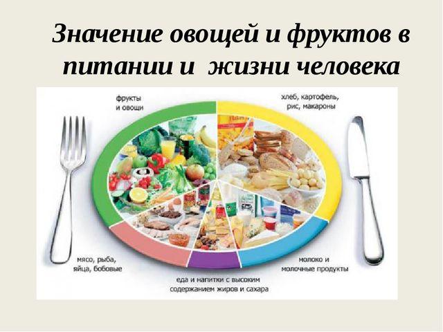 Значение овощей и фруктов в питании и жизни человека