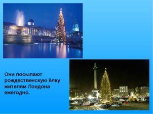 Они посылают рождественскую ёлку жителям Лондона ежегодно.