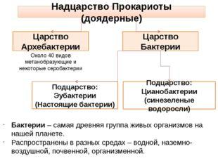 Надцарство Прокариоты (доядерные) Царство Архебактерии Подцарство: Эубактерии