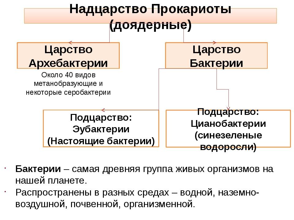 Надцарство Прокариоты (доядерные) Царство Архебактерии Подцарство: Эубактерии...