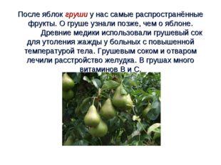 После яблок груши у нас самые распространённые фрукты. О груше узнали позже,