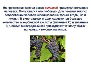 На протяжении многих веков виноград привлекал внимание человека. Пользовался