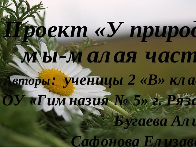 Проект «У природы мы-малая часть» Авторы: ученицы 2 «В» класса МБОУ «Гимнази...