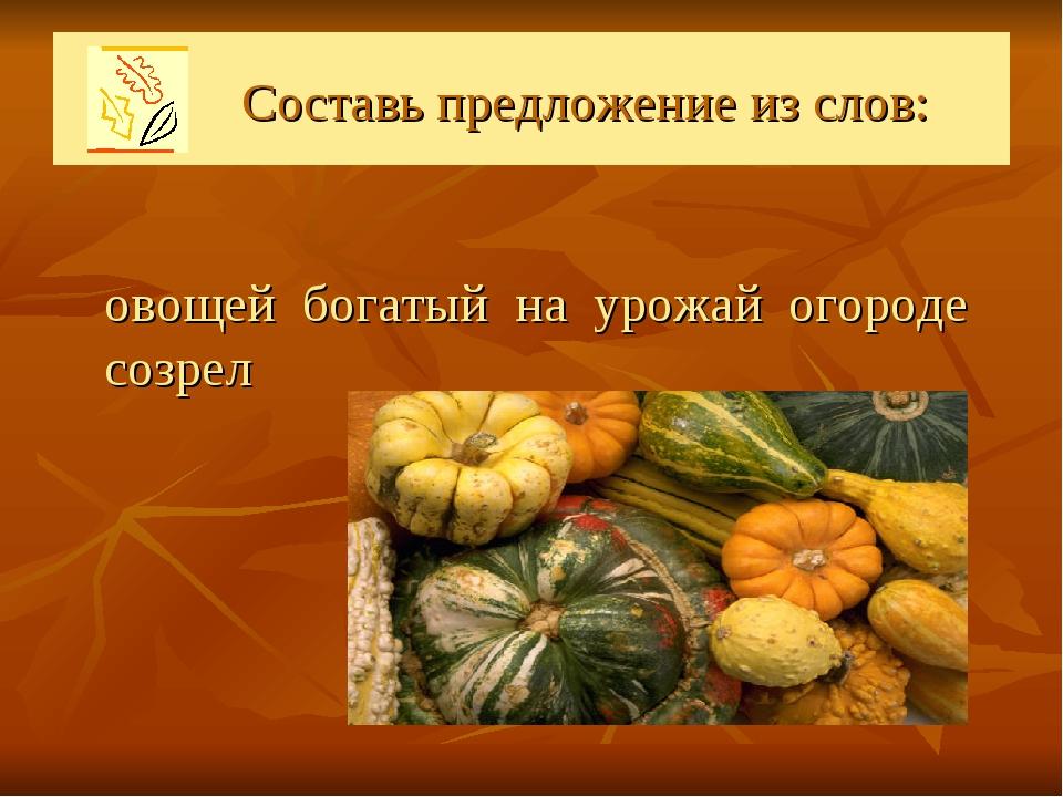 Составь предложение из слов: овощей богатый на урожай огороде созрел