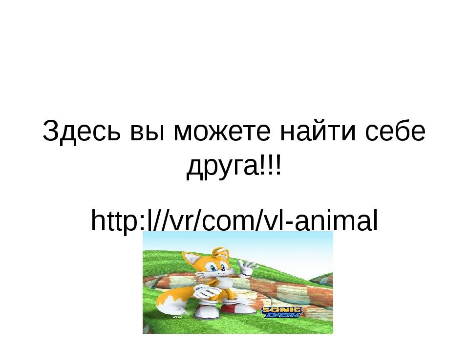 Здесь вы можете найти себе друга!!! http: //vr/com/vl-animal