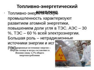 Топливно-энергетический комплекс Топливно-энергетическую промышленность харак