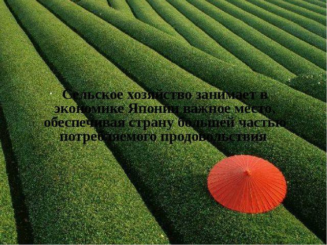 Сельское хозяйство занимает в экономике Японии важное место, обеспечивая стра...