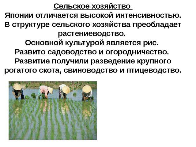 Сельское хозяйство Японии отличается высокой интенсивностью. В структуре сель...
