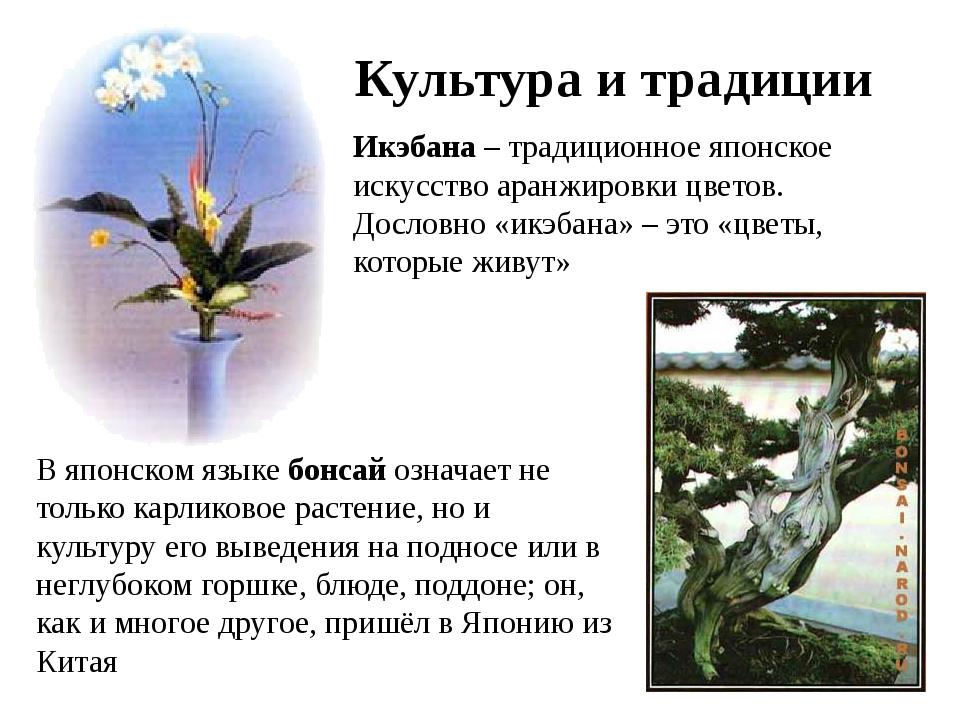 Культура и традиции Икэбана – традиционное японское искусство аранжировки цве...