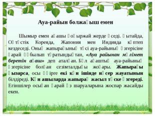 Ауа-райын болжағыш емен Шымыр емен ағашы қоңыржай жерде өседі. Қытайда, Оңтү