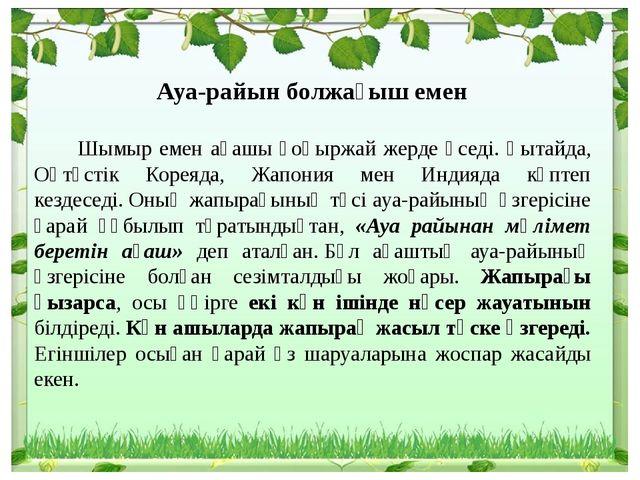 Ауа-райын болжағыш емен Шымыр емен ағашы қоңыржай жерде өседі. Қытайда, Оңтү...