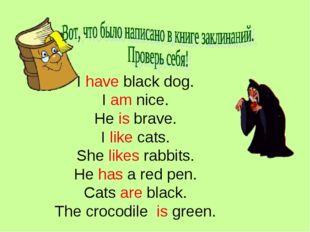 I have black dog. I am nice. He is brave. I like cats. She likes rabbits. He