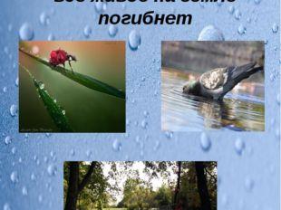 Без воды невозможна жизнь на Земле. Без неё всё живое на земле погибнет