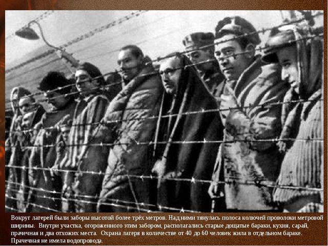 Вокруг лагерей были заборы высотой более трёх метров. Над ними тянулась полос...