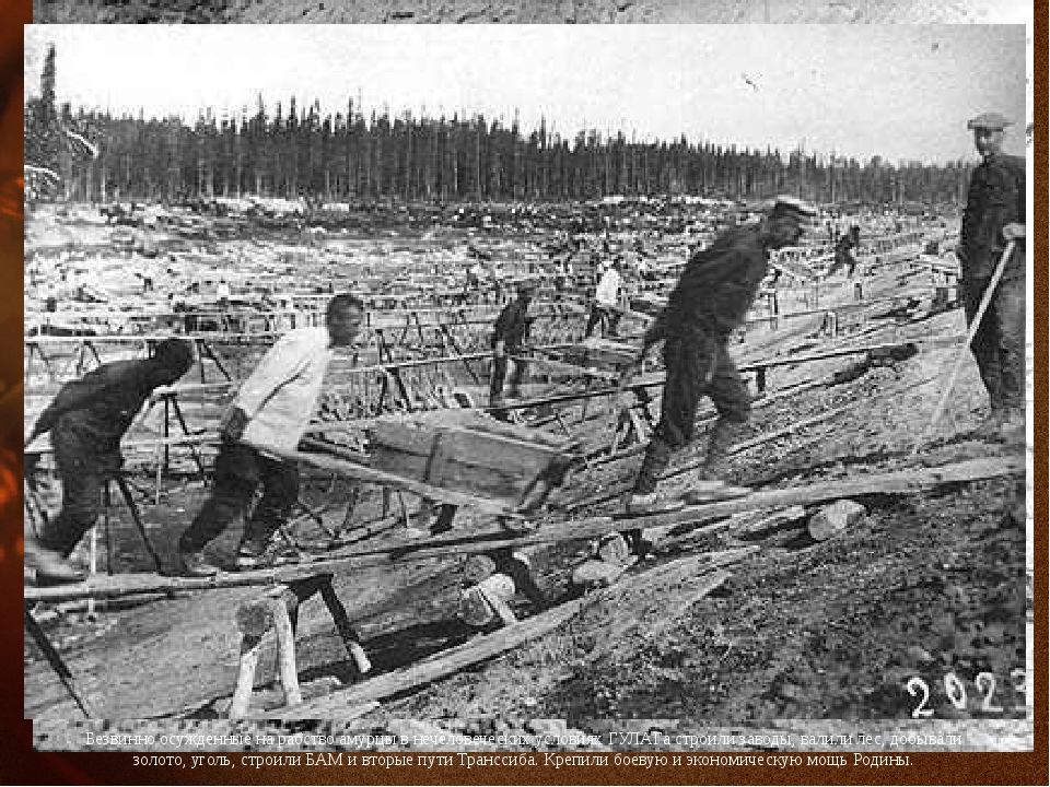 Безвинно осужденные на рабство амурцы в нечеловеческих условиях ГУЛАГа строил...