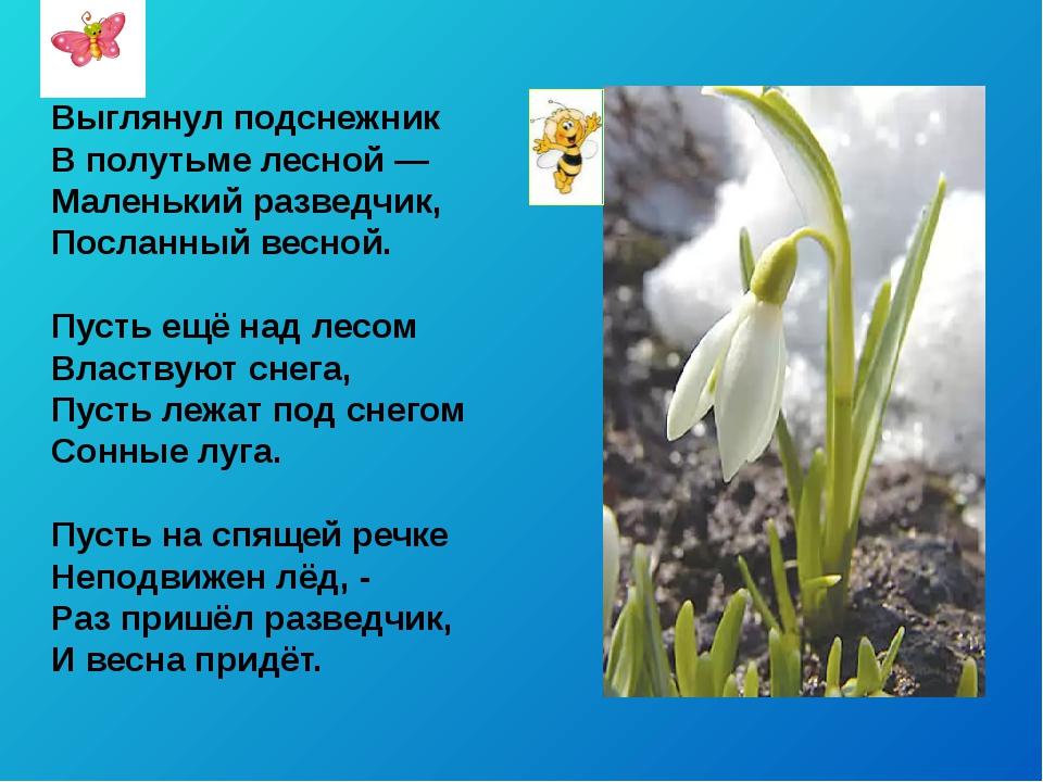 Выглянул подснежник В полутьме лесной — Маленький разведчик, Посланный весно...