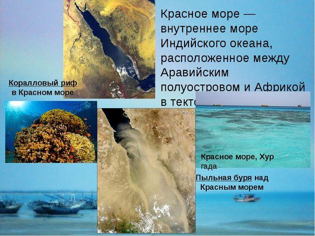 Красное море — внутреннее море Индийского океана, расположенное между Аравийс...