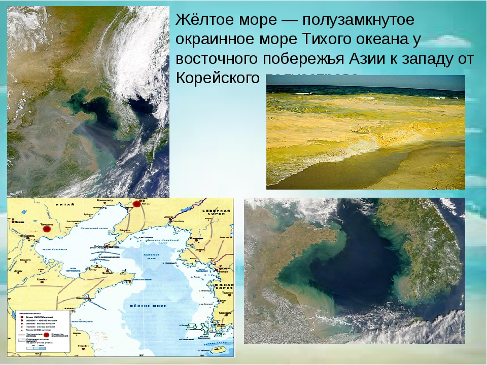 Жёлтое море — полузамкнутое окраинное море Тихого океана у восточного побереж...