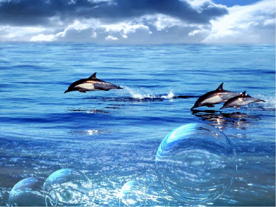Море красивые картинки и анимации