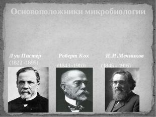 Основоположники микробиологии Луи Пастер (1822 -1895) Роберт Кох И.И.Мечников