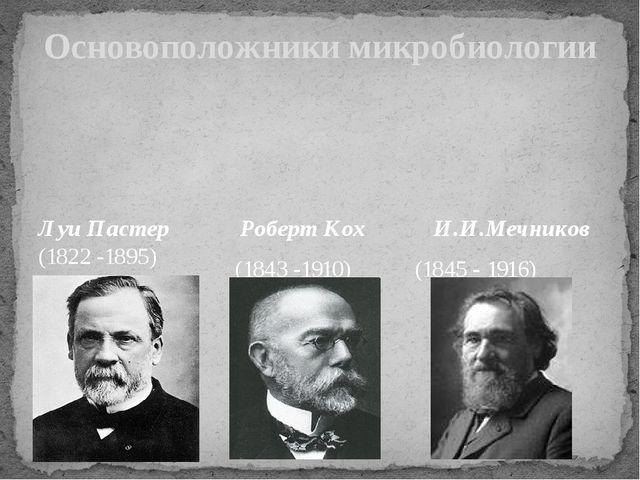Основоположники микробиологии Луи Пастер (1822 -1895) Роберт Кох И.И.Мечников...