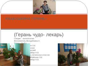 (Герань чудо- лекарь) Секция : валеологгия Исполнитель:Молдабаева А. Класс: 5