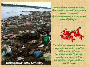 Уже сейчас великая река буквально захлёбывается нечистотами, сбрасываемыми из