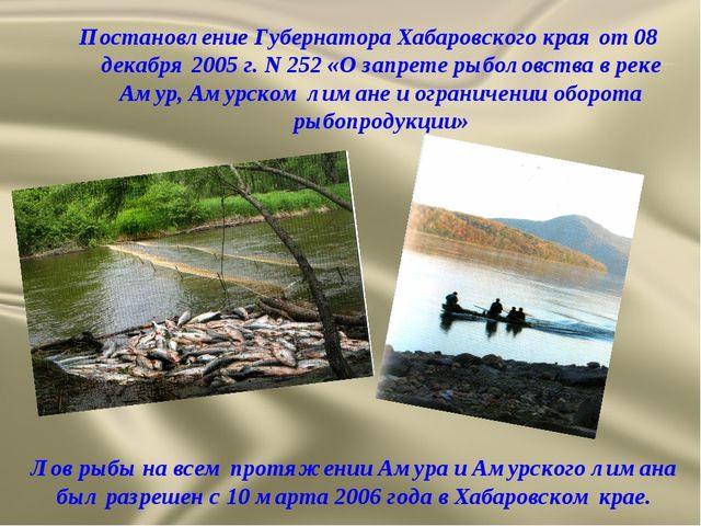 Постановление Губернатора Хабаровского края от 08 декабря 2005 г. N 252 «О за...