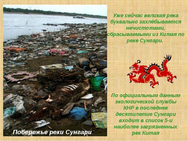 Уже сейчас великая река буквально захлёбывается нечистотами, сбрасываемыми из...