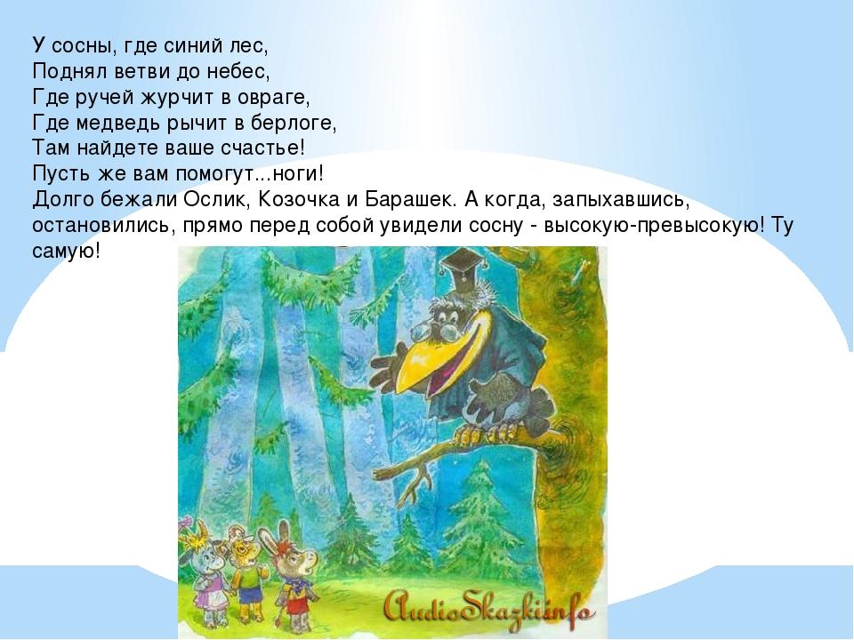 У сосны, где синий лес, Поднял ветви до небес, Где ручей журчит в овраге, Где...