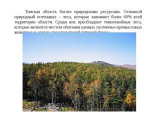 Томская область богата природными ресурсами. Основной природный потенциал –