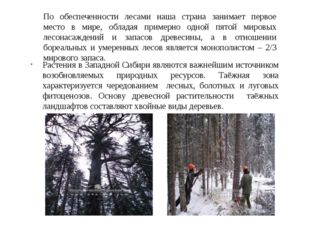 По обеспеченности лесами наша страна занимает первое место в мире, обладая пр