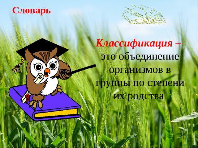Словарь Классификация – это объединение организмов в группы по степени их род...