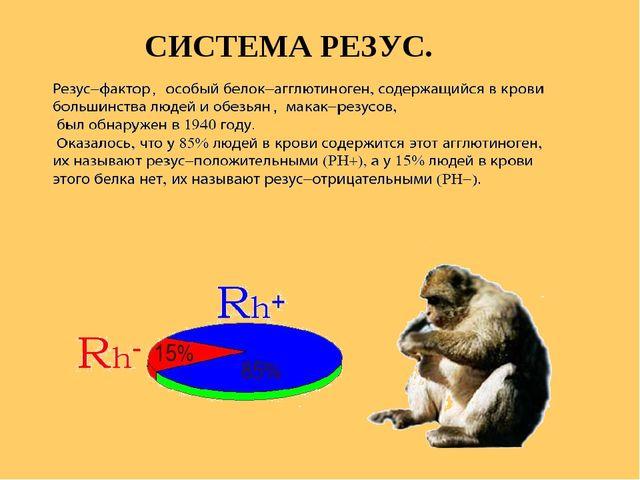 СИСТЕМА РЕЗУС.