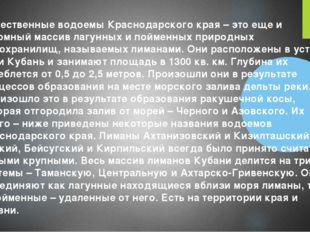 Естественные водоемы Краснодарского края – это еще и огромный массив лагунны