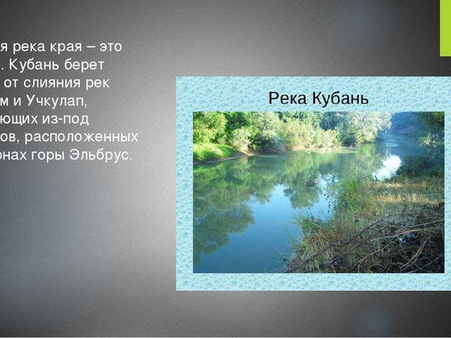 Главная река края – это Кубань. Кубань берет начало от слияния рек Уллукам и...