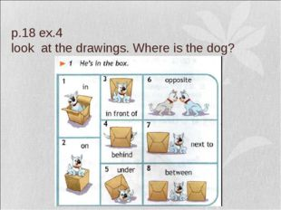 p.18 ex.4 look at the drawings. Where is the dog?