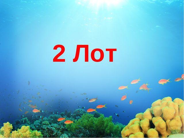 2 Лот