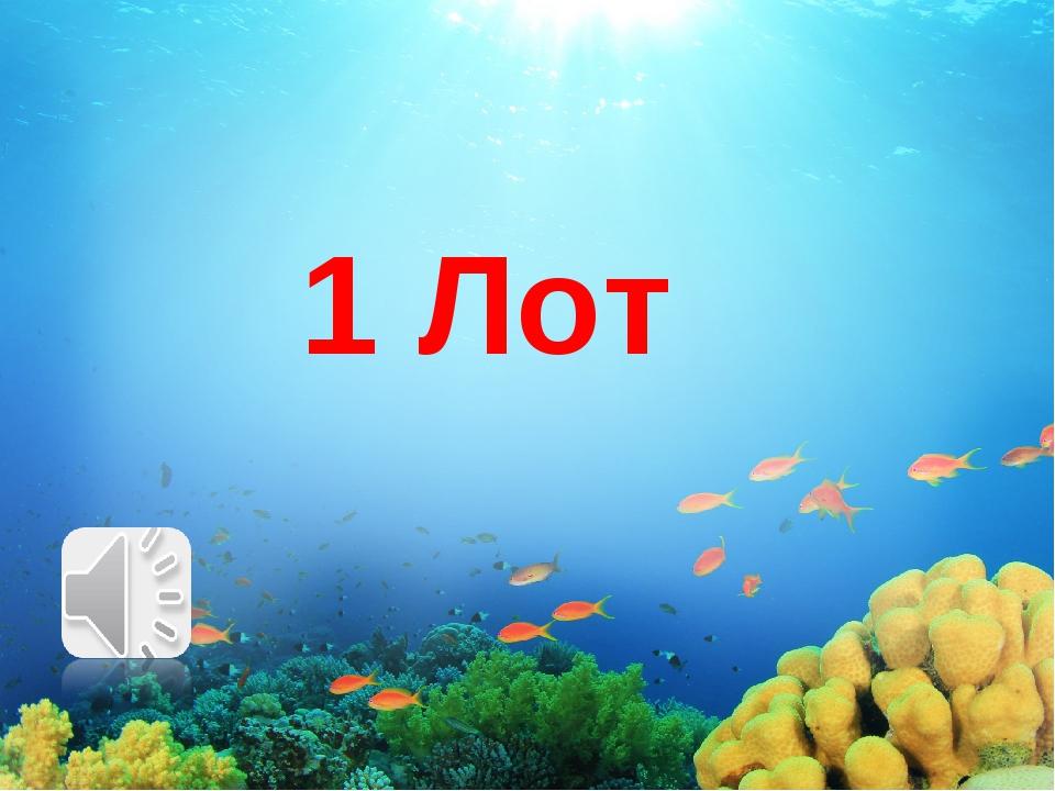 1 Лот