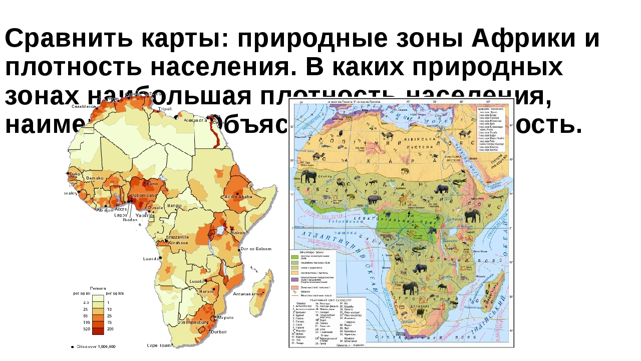 Сравнить карты: природные зоны Африки и плотность населения. В каких природны...