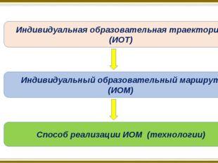 Индивидуальная образовательная траектория (ИОТ) Индивидуальный образовательны