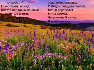 Что такое луг? Ковёр травы вокруг. Цветов нарядных венчики, Звонкие кузнечик