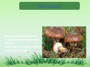 Маслёнок Шоколадно-бурый гриб, К скользкой шляпке лист прилип. Воротник а