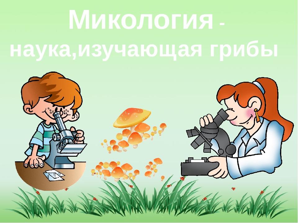 Микология - наука,изучающая грибы