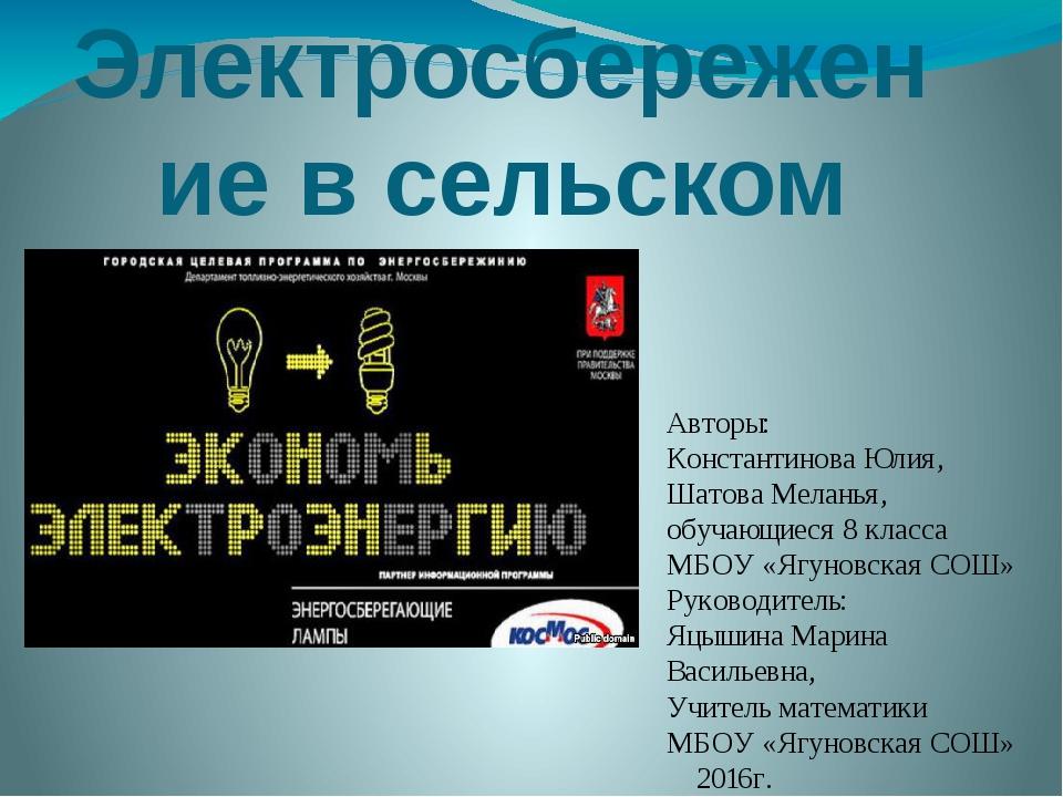 Электросбережение в сельском доме Авторы: Константинова Юлия, Шатова Меланья,...