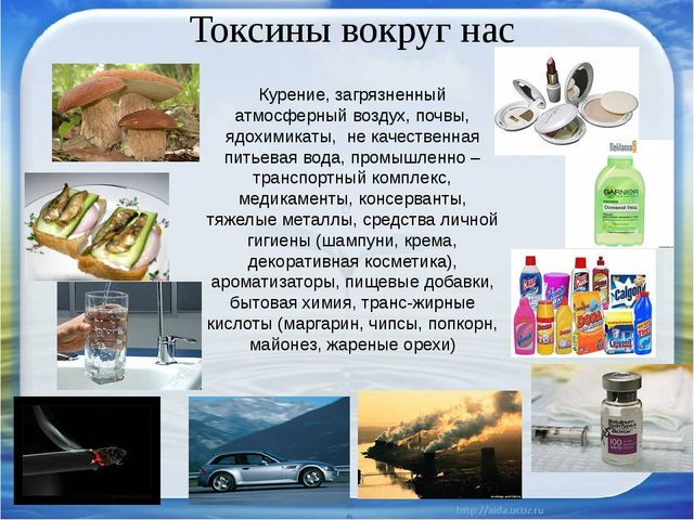 Токсины вокруг нас Курение, загрязненный атмосферный воздух, почвы, ядохимика...