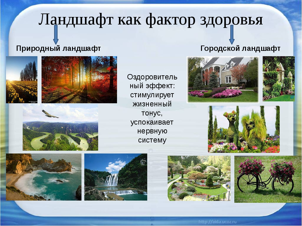 Ландшафт как фактор здоровья Природный ландшафт Городской ландшафт Оздоровите...