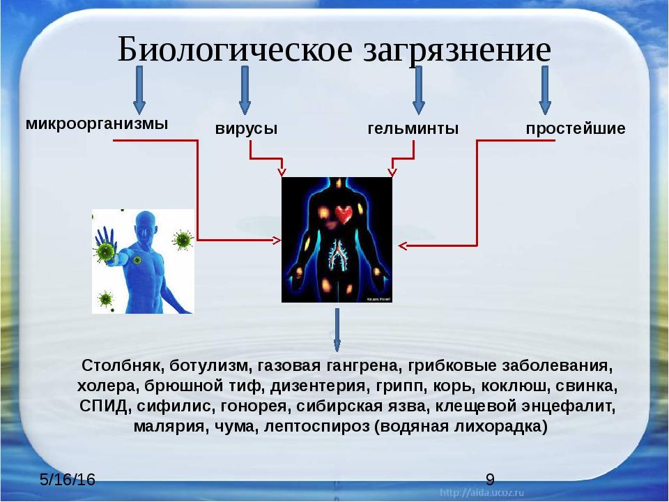 Биологическое загрязнение микроорганизмы вирусы гельминты простейшие Столбняк...